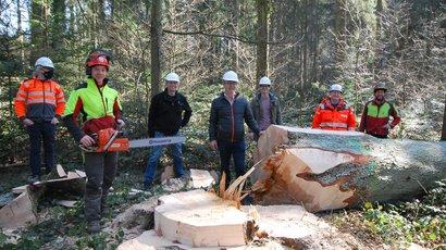 Schweizer Holz für das neue Schulhaus von Holderbank